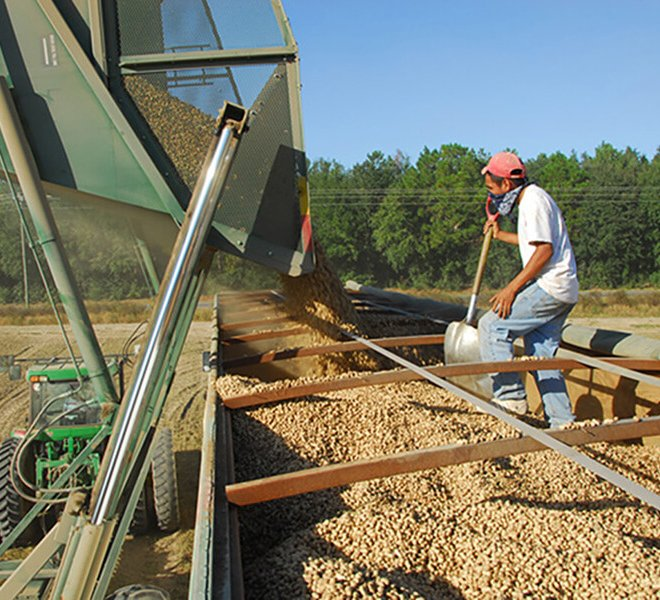Advance Trailer peanut drying trailer